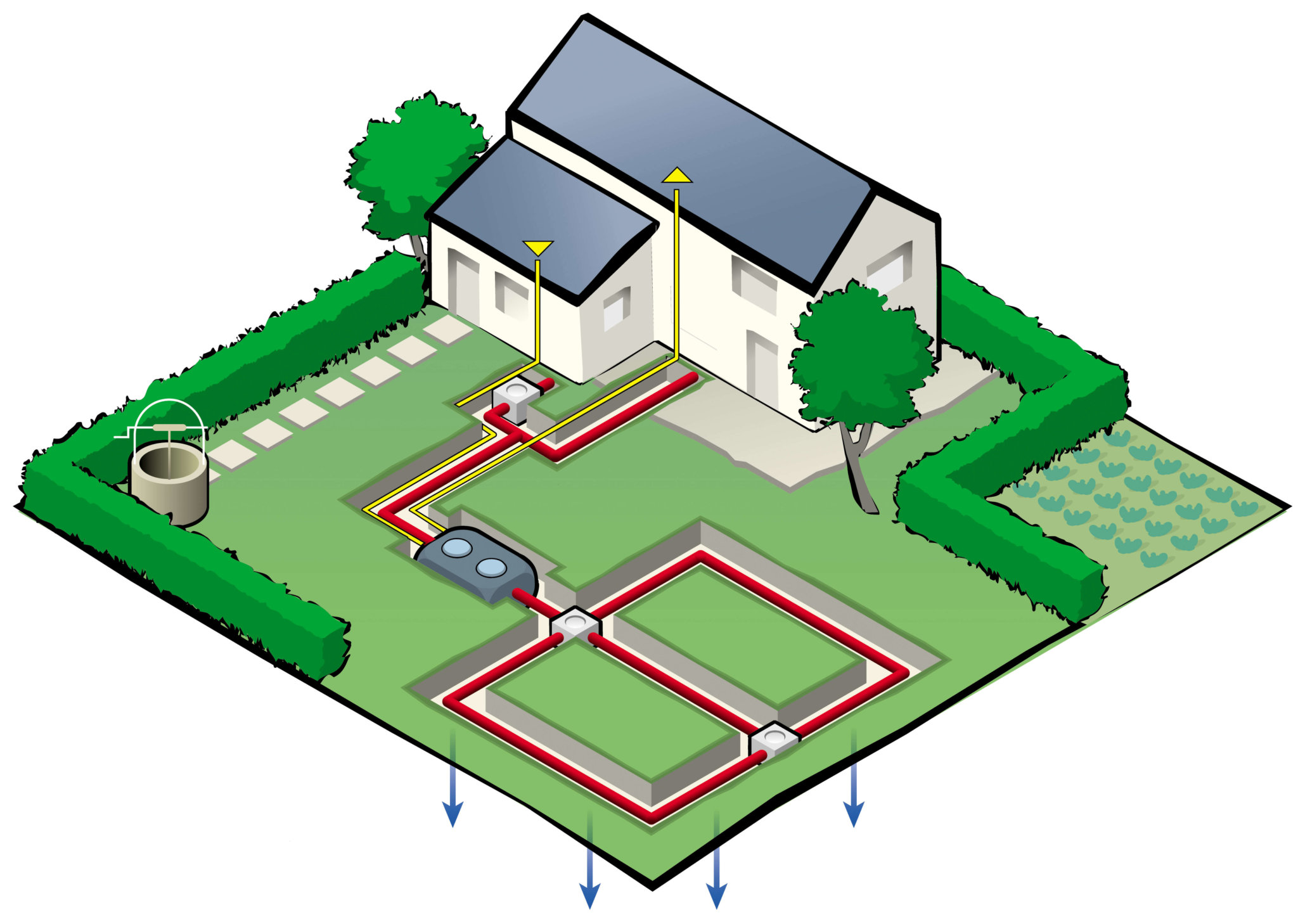 Layout of a residential septic system\